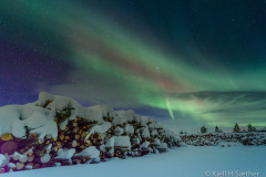 Timber under Aurora Borealis